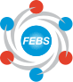 Federation of European Biochemical Sciences
